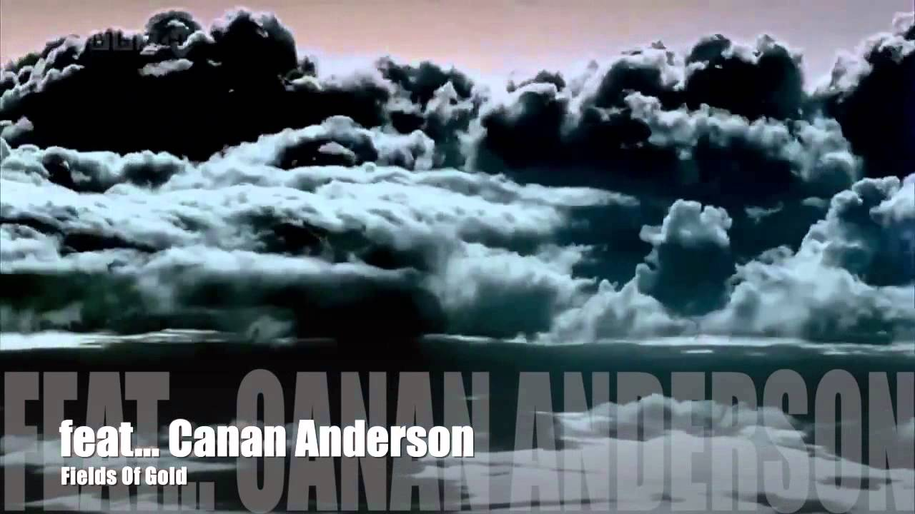 Canan Anderson Fields of Gold